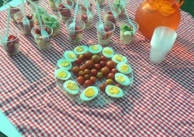 picnic-caramelo-huechuraba-2019-41